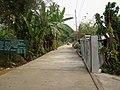 Ban Rung Daeng - panoramio - CHAMRAT CHAROENKHET (13).jpg