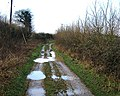 Barton Stacey - A Muddy Track - geograph.org.uk - 651824.jpg