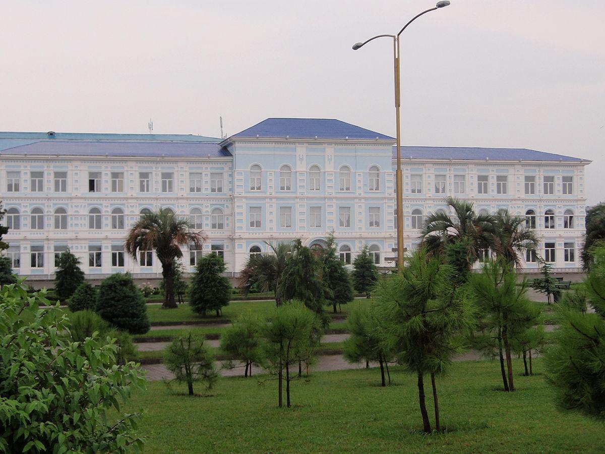 Sota Rustaveli Devlet Universitesi Vikipedi
