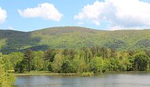 Wooded mountain, seen from a lake