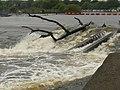 Beeston Weir in flood - geograph.org.uk - 1046983.jpg