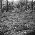 Begraafplaats I, overzicht - 20653270 - RCE.jpg