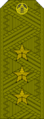 Belarus MIA—01 Colonel General rank insignia (Olive)—Removable.png