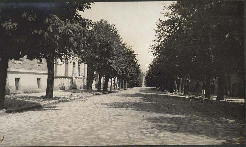 Archivo:Belgrade Boulevard 1919.jpg