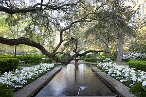 Bellingrath Gardens and Home - Water feature in the formal gardens