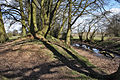 Berry Mound Ramparts.jpg