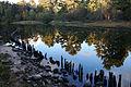 Big Sable River (8741875650).jpg