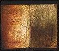 Blackfield - Hello (single cover).jpg