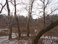 Blahovisnyi, Cherkasy, Cherkas'ka oblast, Ukraine - panoramio (22).jpg
