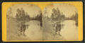 Blossom Hill Pond, by Couch, C. M., fl. 1860-1889.png