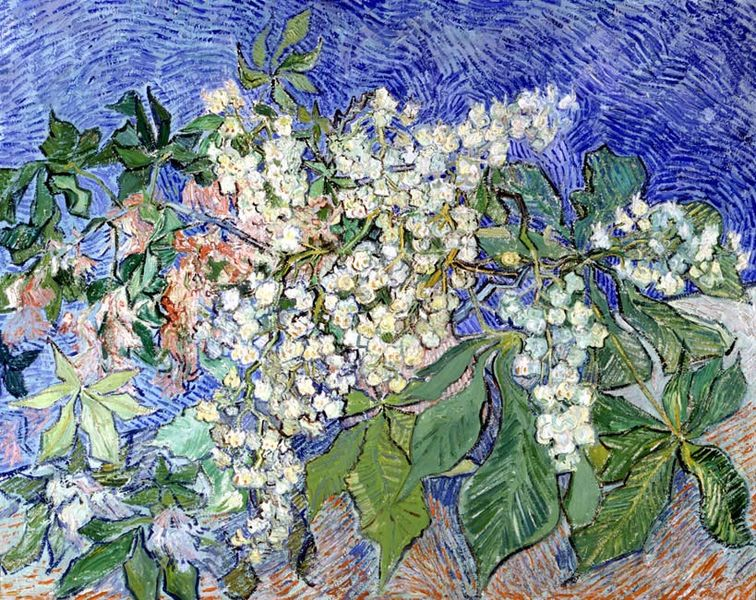 File: fioritura dei rami di castagno.jpg