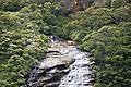 Blue Mountains - Wentworth Falls (6596121439).jpg