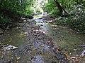 Blunt Run (Muskingum County, Ohio, USA) 1 (20871857553).jpg