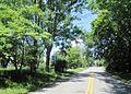Bonetown, NJ.jpg