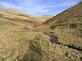 Border Hill Country - geograph.org.uk - 344510.jpg