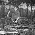 Bosbewerking, arbeiders, boomstammen, gereedschappen, Bestanddeelnr 251-9142.jpg