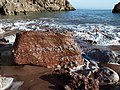 Boulder at Little Oddicombe Beach - geograph.org.uk - 675946.jpg