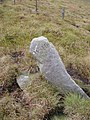 Boundary stone on Riggs Moor - geograph.org.uk - 239469.jpg
