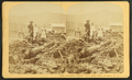 Bourdeau Family, Owl's Head Slide, Jefferson, N.H, from Robert N. Dennis collection of stereoscopic views 4.png