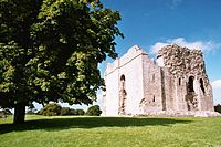 Bowes Castle - geograph.org.uk - 1060655.jpg