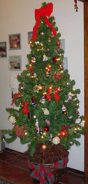 Brazilian-christmas-tree