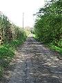 Bridleway, Rainstorth - geograph.org.uk - 401097.jpg