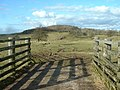 Bridleway to Sealford Farm - geograph.org.uk - 124134.jpg