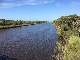 Brodribb River river in East Gippsland Shire, Victoria, Australia