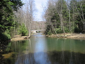 Anderson Creek (Pennsylvania) - Brown Springs, Moshannon State Forest, Union Township, Clearfield County, PA