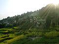 Budhanilkantha.7.jpg