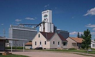 Buffalo Lake, Minnesota - Residences and a grain elevator in Buffalo Lake, Minnesota