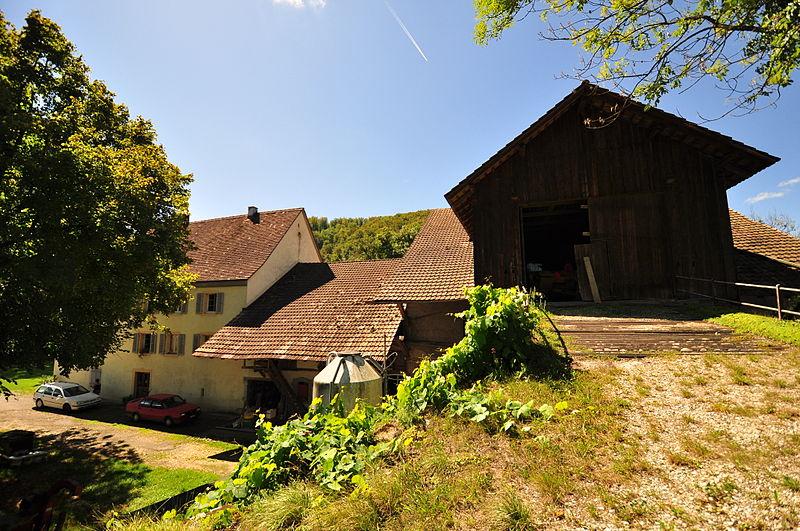 Arquivo: Buix Prairie-Dessous (Villa Gallo-Romaine) (2) .jpg