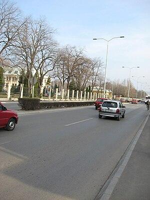 Crveni Krst, Niš - A boulevard in Crveni Krst