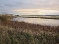 Burton Mere Wetlands - Geograph 3255167.jpg