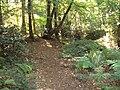 Burton Wood footpath 2.JPG