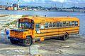 Bus (3077832270).jpg