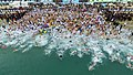 Busan Polar Bear Swimming Contest.jpg