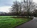 Bushy Park, Dublin -146423 (32605608198).jpg