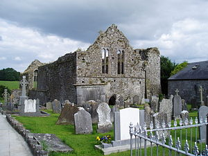 Buttevant - Image: Buttevant Abbey