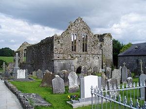 Buttevant - Image: Buttevant Abbey