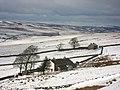 Byerhope Farm - geograph.org.uk - 752511.jpg