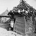 COLLECTIE TROPENMUSEUM Een Samo vrouw voor haar hut TMnr 20010475.jpg