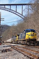 CSX in the New River Gorge (2247733222).jpg