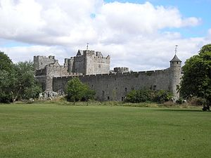 Cahir Castle - Walls and demesne