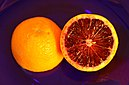 California blood orange.jpg