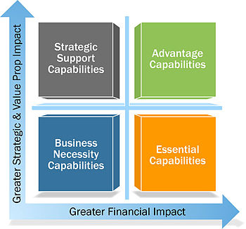 English: Capabilities value contribution to st...