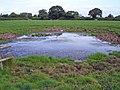 Capenhurst - field pond - geograph.org.uk - 253873.jpg
