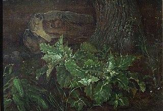 Waldstück mit Baumstamm
