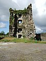Carriganass Castle - geograph.org.uk - 498630.jpg