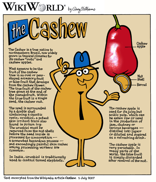 http://upload.wikimedia.org/wikipedia/commons/thumb/8/8e/Cashew_wikiworld.png/514px-Cashew_wikiworld.png